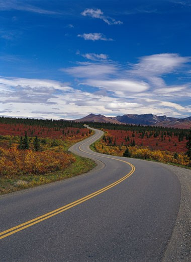 Road Leading to Denali National Park, Alaska, USA : Stock Photo