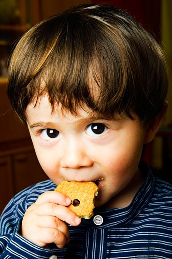 Portrait of Boy Eating Cookie : Stock Photo