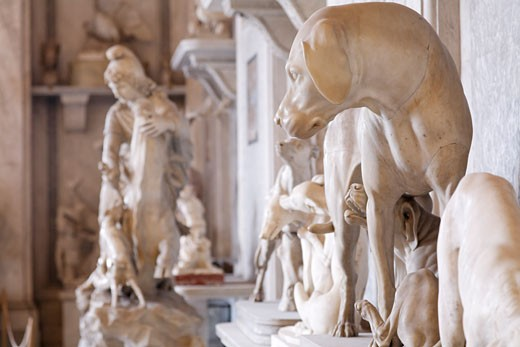 Sculptures inside Vatican Museum, Vatican City, Rome, Italy : Stock Photo