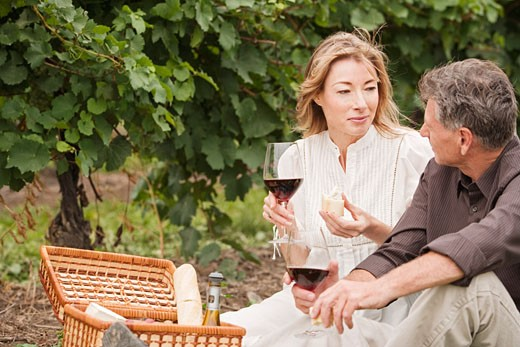 Stock Photo: 1828R-69395 Couple Having a Picnic in a Vineyard