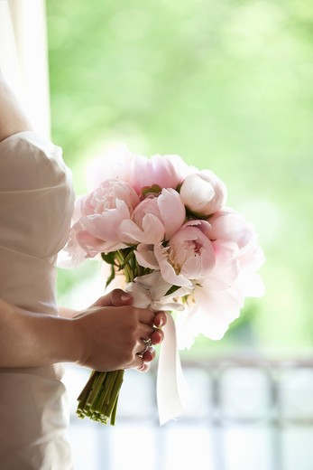 Bride holding Bouquet : Stock Photo
