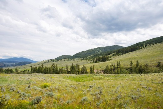 Stock Photo: 1828R-78491 Landscape Near Oliver, Okanagan Valley, British Columbia, Canada