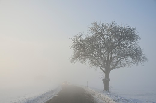Stock Photo: 1828R-80045 Road Through Winter Landscape, near Villingen-Schwenningen, Black Forest, Schwarzwald-Baar, Baden-Wurttemberg, Germany