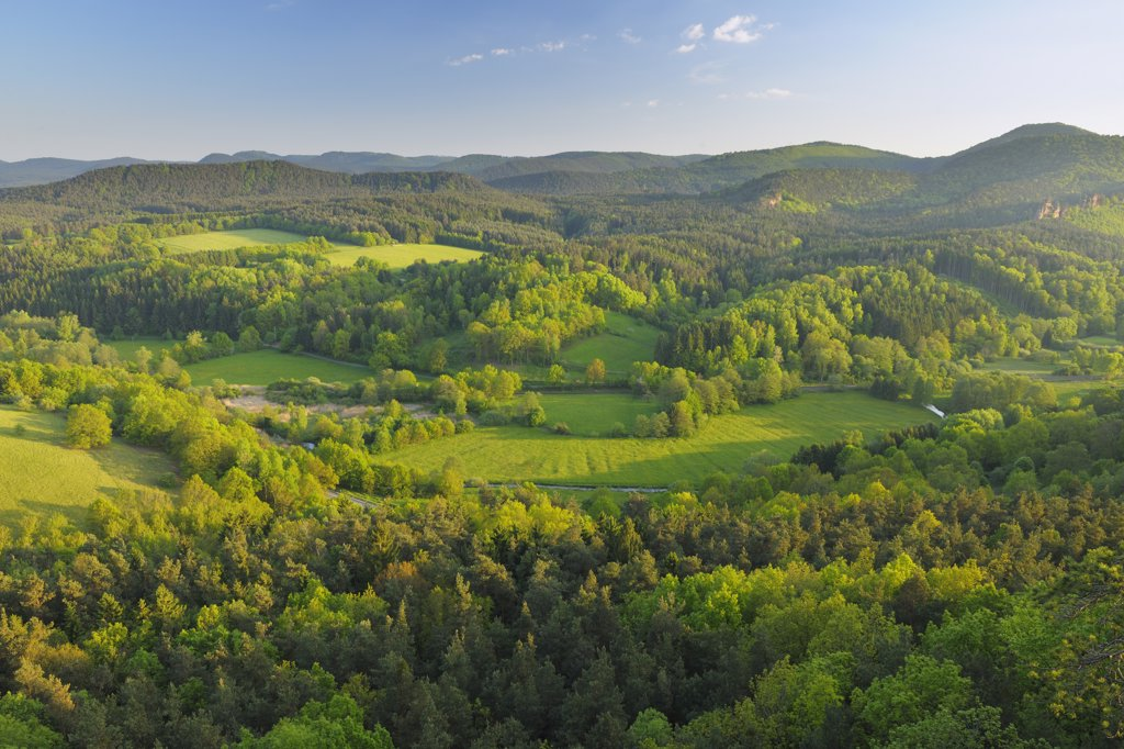 View from Hochstein, Dahn, Pfalzerwald, Rhineland-Palatinate, Germany : Stock Photo