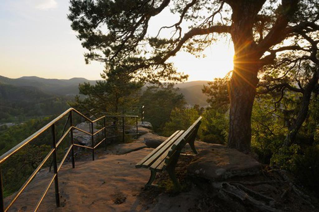 Viewpoint with Bench, Hochstein, Dahn, Pfalzerwald, Rhineland-Palatinate, Germany : Stock Photo
