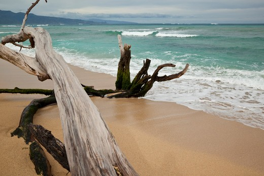 Stock Photo: 1828R-81144 Paia Bay Beach, Maui, Hawaii, USA