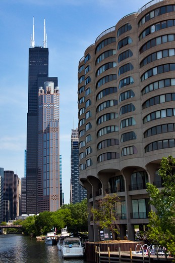 Stock Photo: 1828R-81912 Willis Tower, 311 South Wacker Drive and River City Building, from South Chicago River, Chicago, Illinois, USA