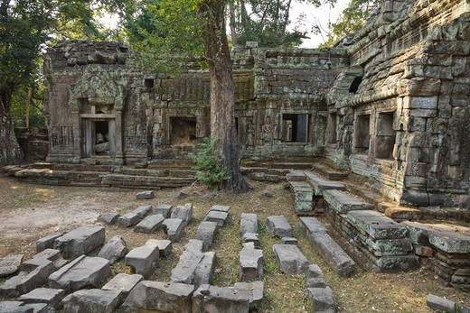 12th - 13th Century Khmer Temple at Ta Prohm, Angkor, Cambodia : Stock Photo