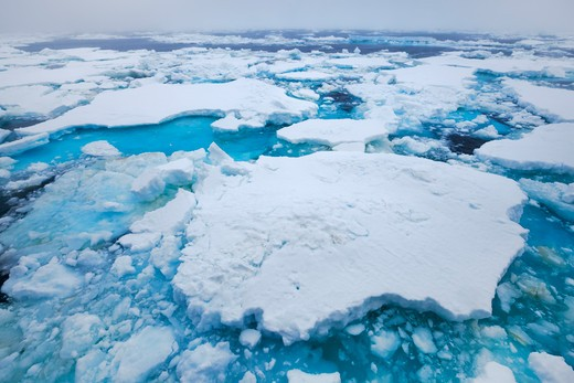 Pack Ice, Southern Thule, South Sandwich Islands, Antarctica : Stock Photo