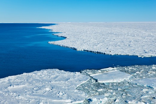Pack Ice, Atka Bay, Weddell Sea, Antarctica : Stock Photo