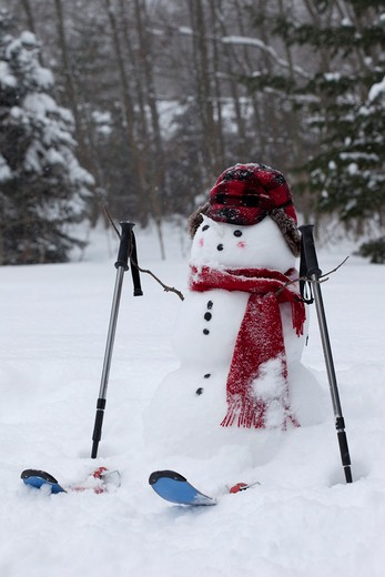 Stock Photo: 1828R-83253 Snowman in Backyard, Muskegon, Michigan, USA