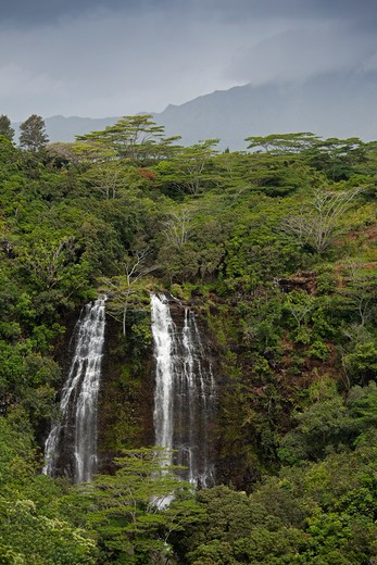 Stock Photo: 1828R-84626 Opaeka'a Falls, Kauai, Hawaii, USA