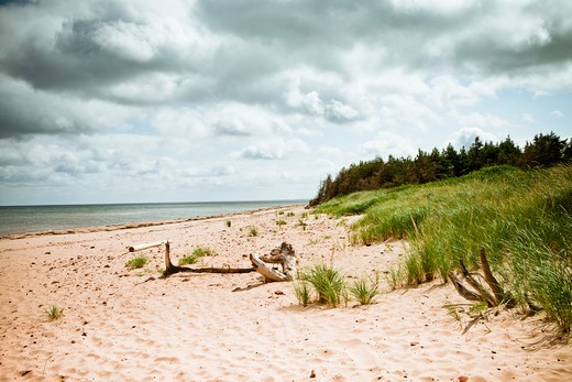 Stock Photo: 1828R-85182 Beach, Prince Edward Island, Canada