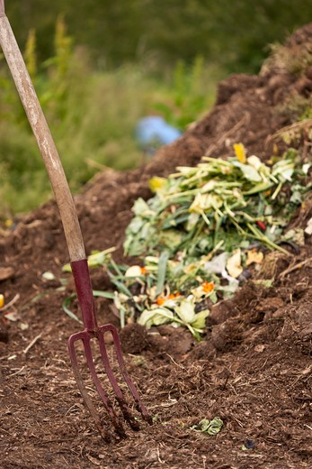 Pitch Fork in Organic Compost Pile, Laugaras, South Iceland, Iceland : Stock Photo