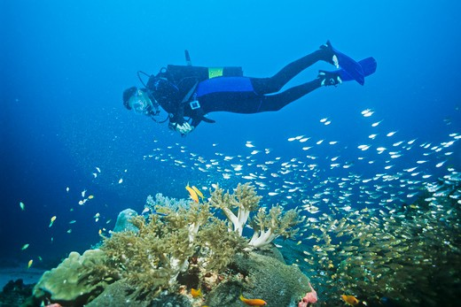 Stock Photo: 1828R-86888 Scuba Diver, Madagascar