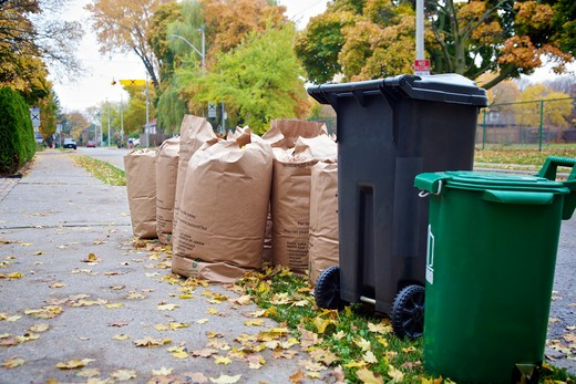 Yard Waste and Garbage Collection, Toronto, Ontario, Canada : Stock Photo