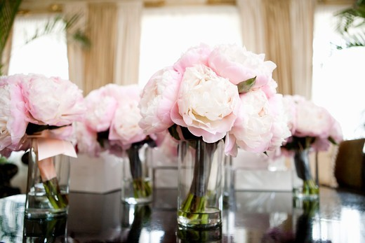 Flower Centerpieces : Stock Photo