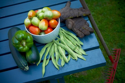 Fresh Picked Garden Vegetables, Toronto, Ontario, Canada : Stock Photo