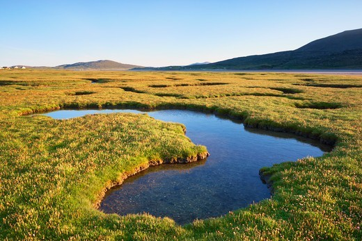Tidal Pools in Salt Marsh, Isle of Harris, Outer Hebrides, Scotland : Stock Photo
