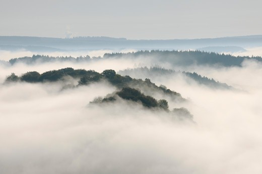 Stock Photo: 1828R-88348 Fog, Forest and Hill, View From Cloef, Mettlach, Merzig-Wadern, Saarland, Germany