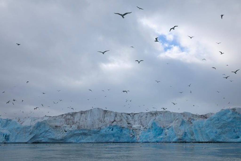 Monacobreen Glacier, Haakon VII Land, Spitzbergen, Svalbard, Norway : Stock Photo