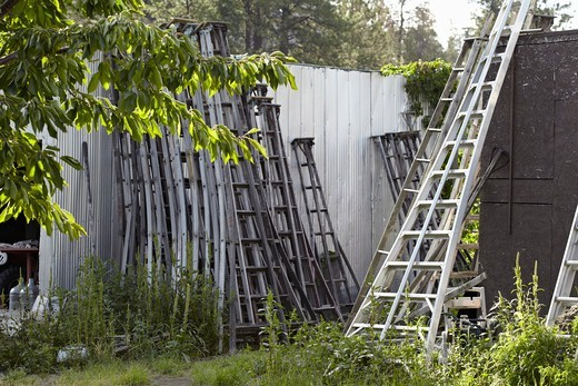 Stock Photo: 1828R-88730 Orchard Ladders, Cawston, Similkameen Country, British Columbia, Canada