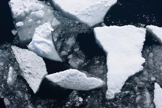 Pack Ice, Greenland Sea, Arctic Ocean, Arctic : Stock Photo