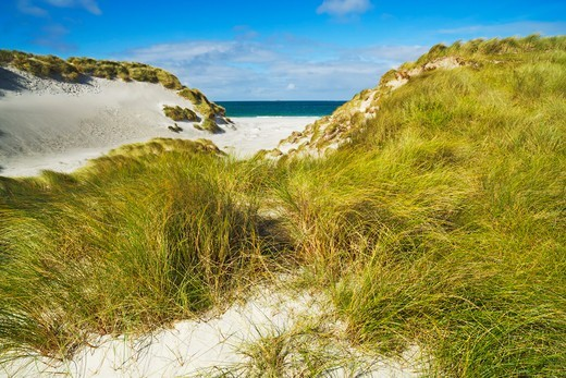 Stock Photo: 1828R-88915 Borgh, Berneray, Outer Hebrides, Hebrides, Scotland
