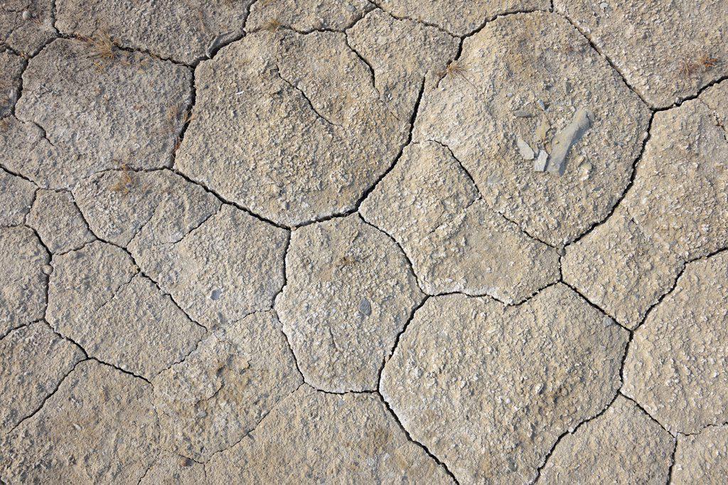 Stock Photo: 1828R-88943 Cracked Soil, Nanortalik, Kujalleq, Kejser Franz Joseph Fjord, Greenland