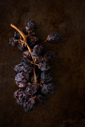 Stock Photo: 1828R-89468 Dried Grapes