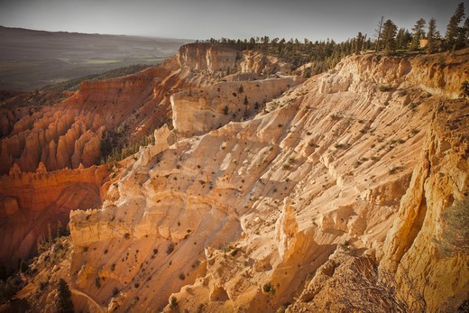 Stock Photo: 1828R-89781 Bryce Amphitheater, Bryce Canyon National Park, Utah, USA