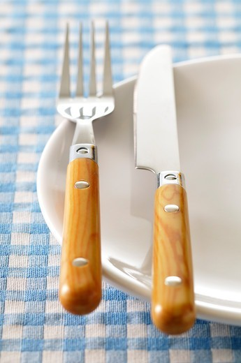 Stock Photo: 1828R-89910 Fork and Knife on Plate