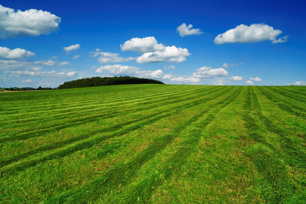 Stock Photo: 1828R-91338 Mown Field, Wolfratshausen, Oberbayern, Bavaria, Germany