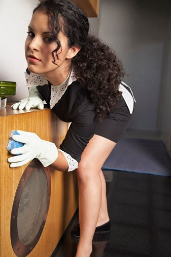 Stock Photo: 1828R-9912 Maid Cleaning House