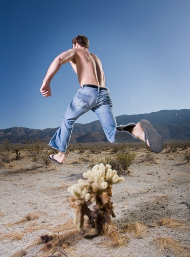 Muscular Man Jumping over Cactus in Desert : Stock Photo