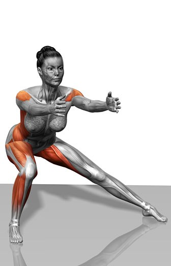 Lateral lunge : Stock Photo