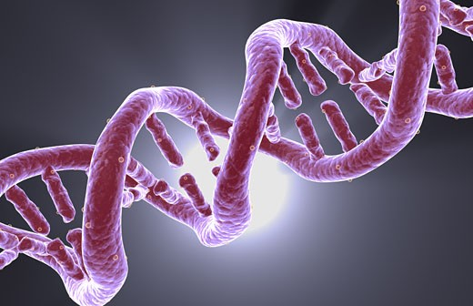 DNA structure : Stock Photo