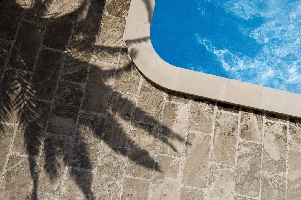 Stock Photo: 1838-10066 Swimming Pool and Palm Tree Shadow