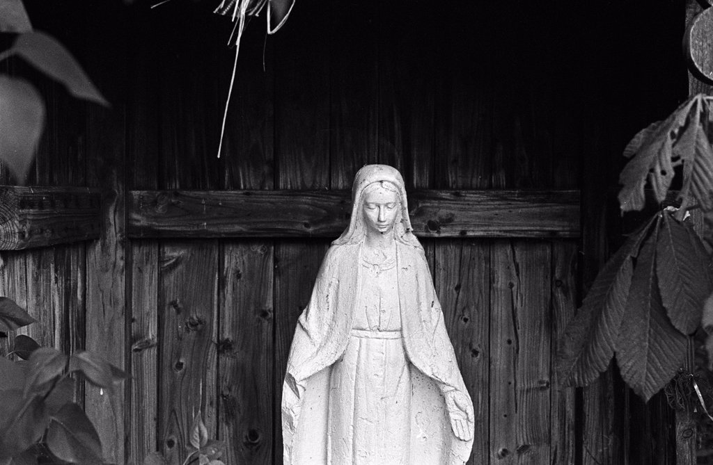 Statue of Virgin Mary : Stock Photo
