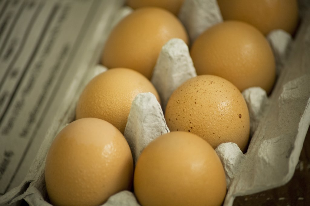 Stock Photo: 1838-1057 Brown Eggs in Carton