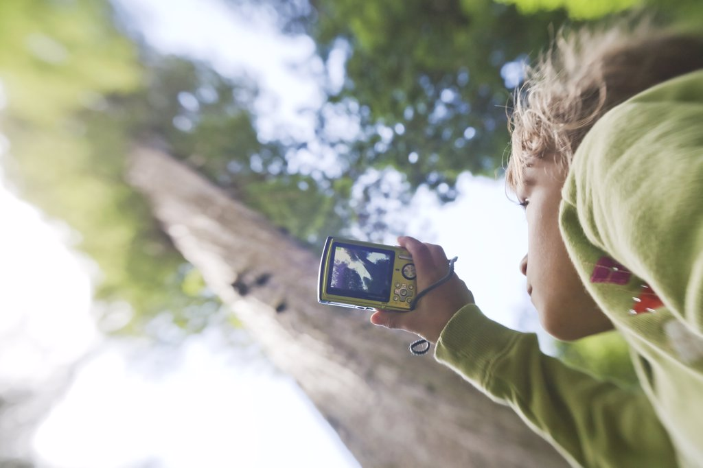 Stock Photo: 1838-11942 Young Girl Taking Photo of Tall Redwood Tree, Redwood National Park, California, USA