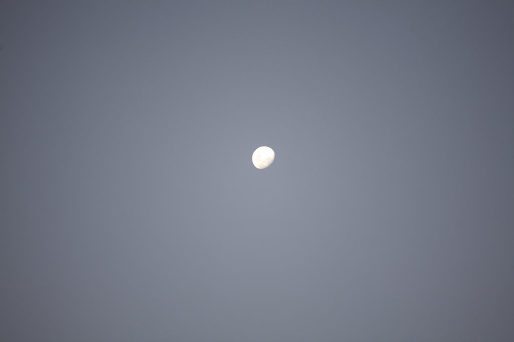 Stock Photo: 1838-13325 Moon in Sky