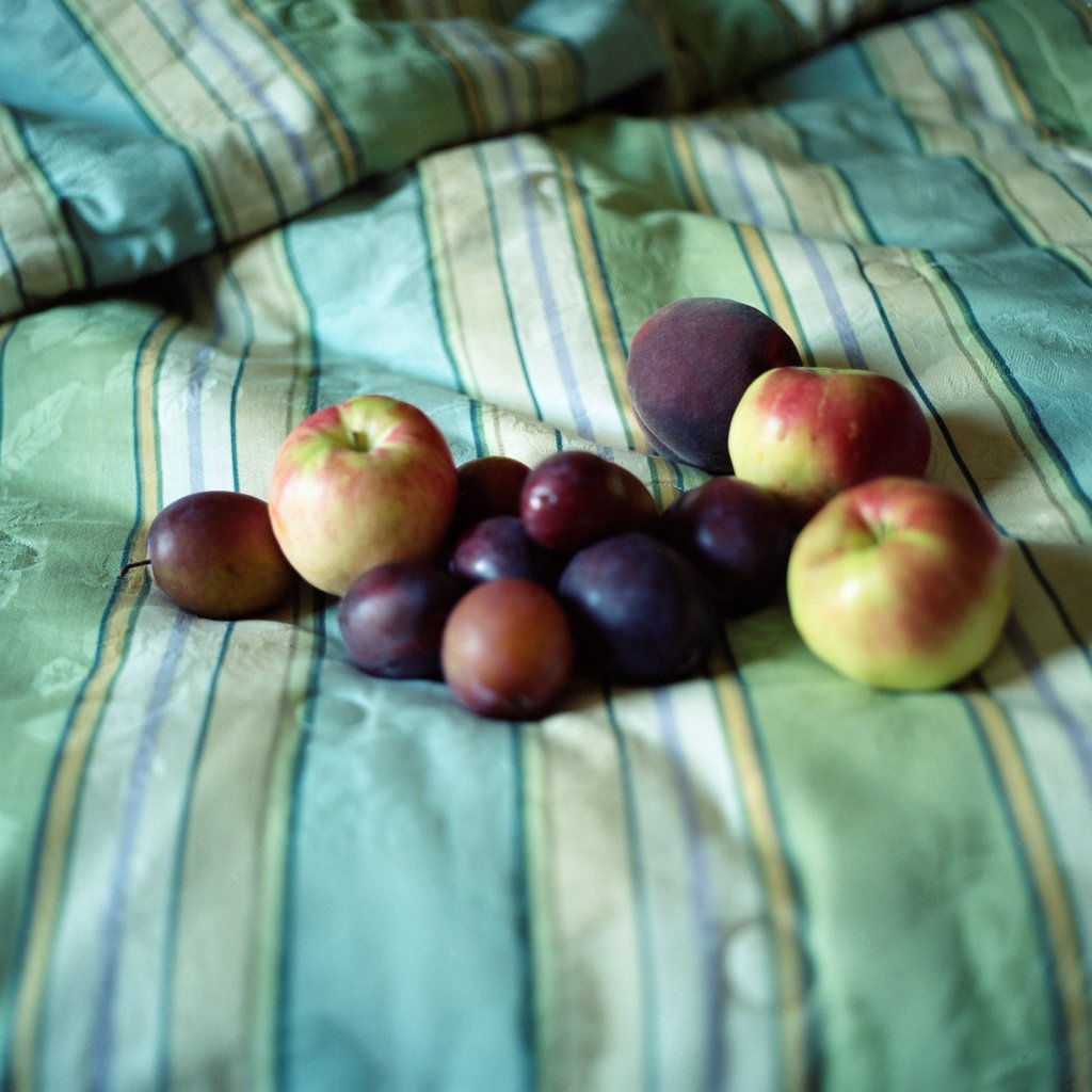 Stock Photo: 1838-13700 Fruit on Bed