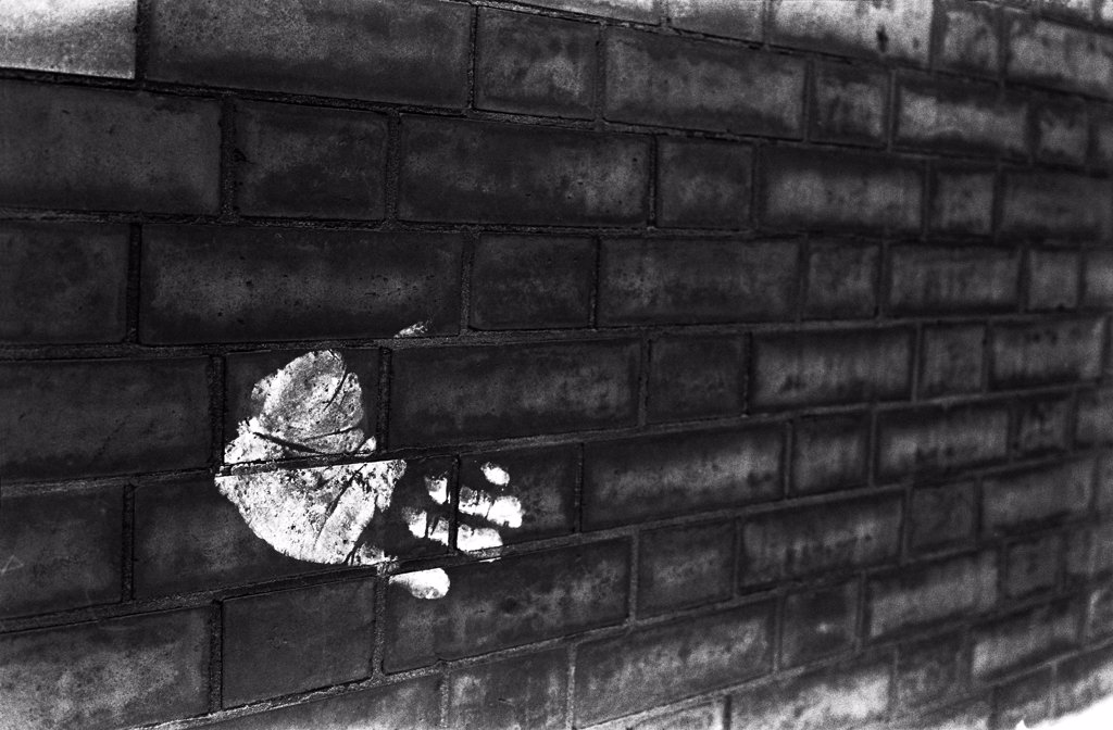 Stock Photo: 1838-13783 Handprint on Brick Wall