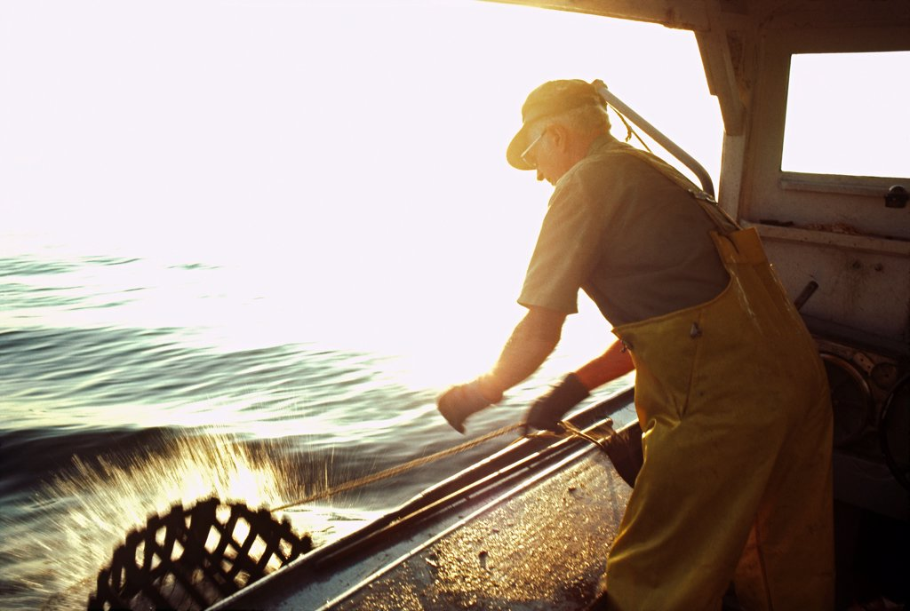 Lobsterman Setting Lobster Trap on Side of Boat : Stock Photo