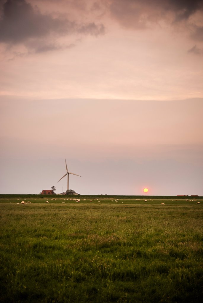 Rural Farmland With Wind Turbine at Sunset, Workum, Netherlands : Stock Photo