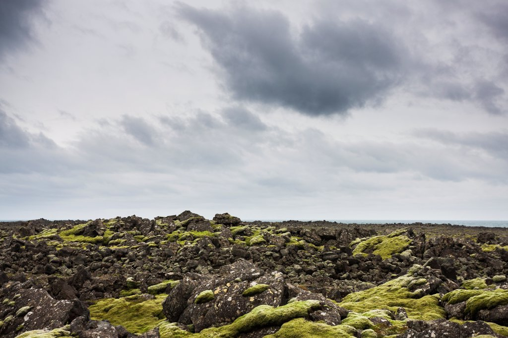 Stock Photo: 1838-14064 Lava Field Covered in Moss, Iceland