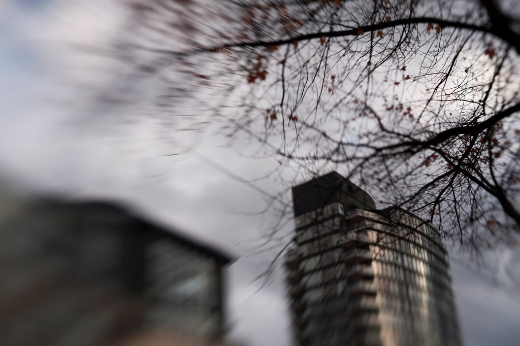 Stock Photo: 1838-14084 Blurred Tree Branches and Urban Buildings, Vancouver, Canada