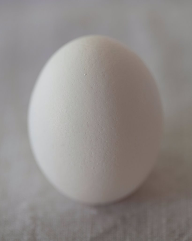 Stock Photo: 1838-14126 White Egg, Close Up