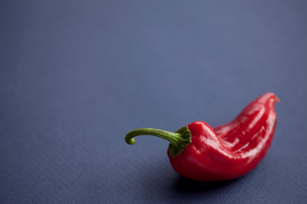 Red Chili Pepper : Stock Photo